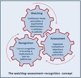 Blog Careful Nursing Nursing assessment is an evaluation of the nature and extent of nursing problems presented by a patient for the purpose of patient care planning. blog careful nursing