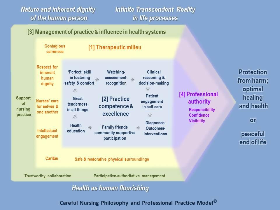 Professional Practice Model - Careful Nursing