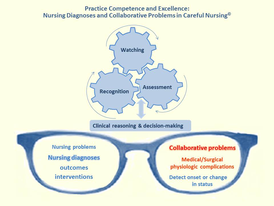 critical thinking and nursing judgement
