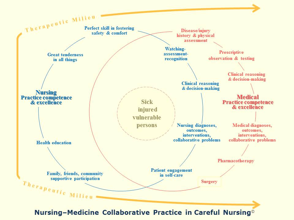 Practice competence excellence careful nursing competence and excellence ccuart Gallery