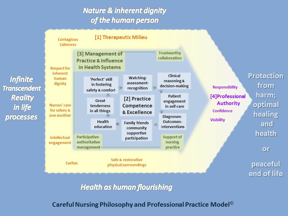 professional philosophy of nursing Mission & vision statement the philosophy of the school of nursing is consistent with that of implicit in the practice of professional nursing is.